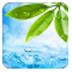 轻轻一点云播神器(里番神器) V17.11.27 绿色版