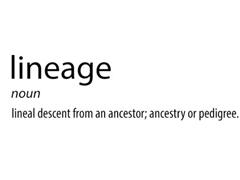 曝Cyanogen Mod将改名:或改为LineageOS