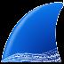wireshark(抓包分析工具)V3.0.3 32位英文安装版