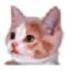易软宠物医院管理系统 V3.8 官方下载版