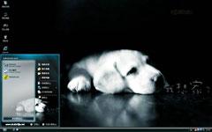 恋家狗狗xp电脑主题