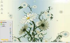 白色雏菊xpw88live优德老虎机