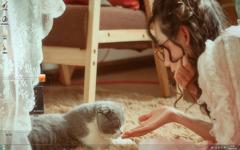 美女和肥猫的故事Win7主题