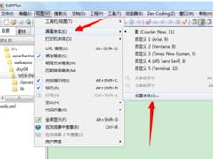 EditPlus如何设置文本背景色?EditPlus设置文本背景色的方法步骤