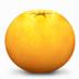 橘子水印添加器 V1.0 綠色版