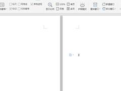wps文字怎么设置文档多页显示?wps设置文档多页显示的操作步骤