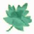 單詞聽寫專家 V2.0 綠色版