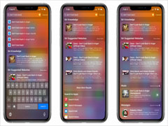 iOS 14发布最新测试版:搜索框功能进一步优化