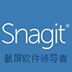 SnagIt(截图软件) V13.00.6248 官方版