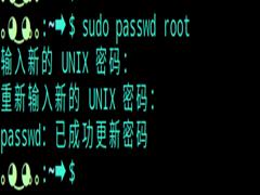 Deepin系統怎么切換到root用戶?Deepin系統切換到root用戶方法教程