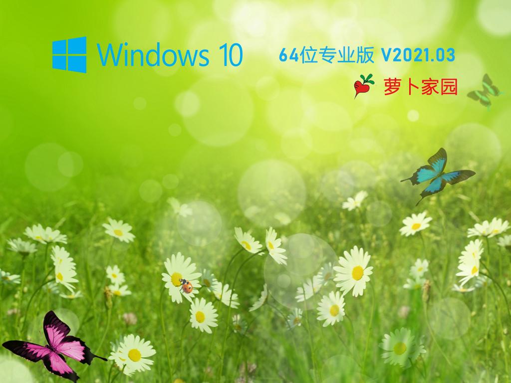 蘿卜家園 Ghost Win10 64位 純凈專業版 V2021.03