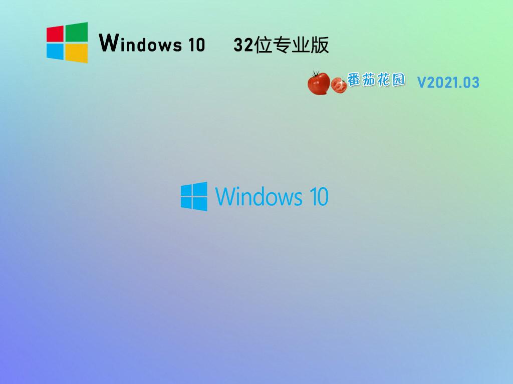 番茄花园Win10 20H2 32位专业版镜像 V2021.03
