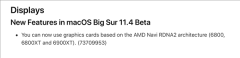 苹果定制独享:AMD Radeon Pro W6900X专业显卡首曝