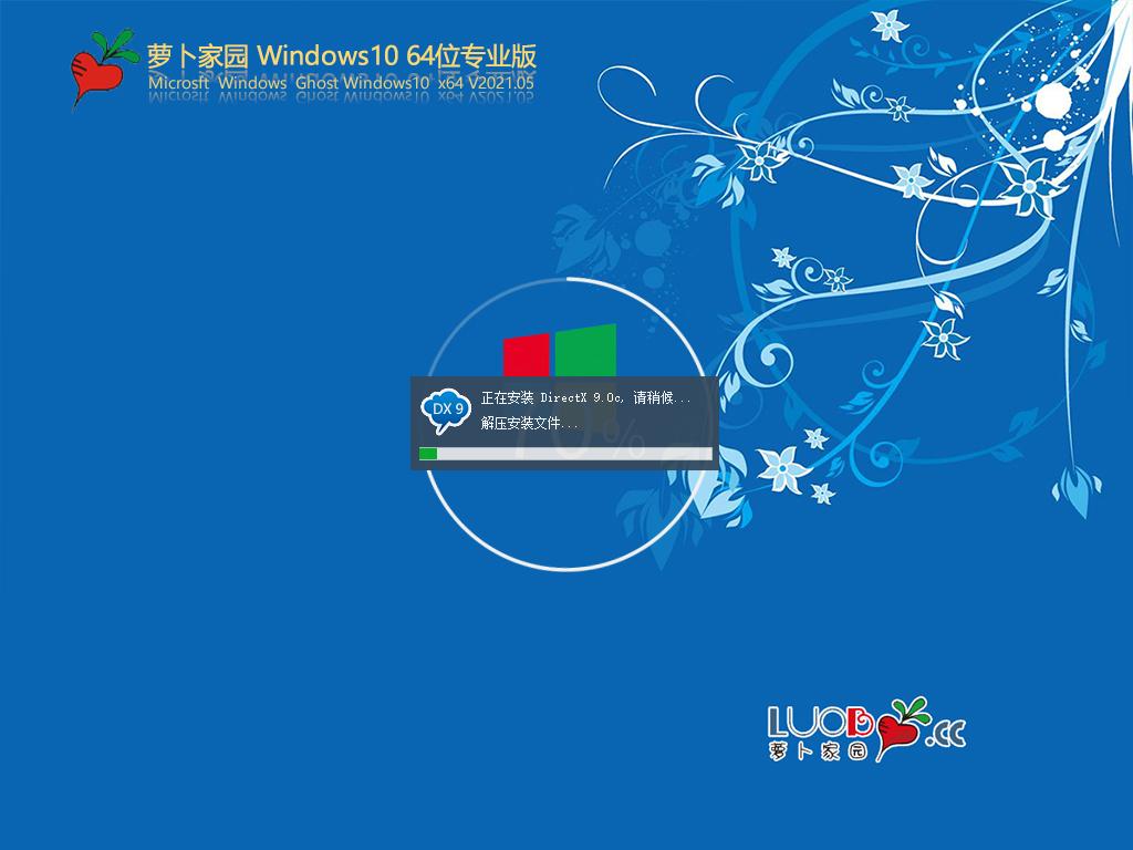 萝卜家园Win10 64位专业版 V2021.05