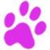 Sensarea(图片视频编辑器) V1.4.1 免费版