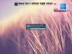 Win11 dev Build 22454.1000正式版iso镜像 V2021