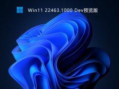 Win11 22463.1000 Dev预览版 V2021