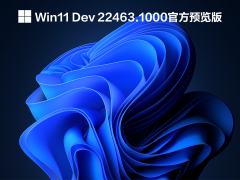 Win11 Dev 22463.1000官方预览版 V2021.09.23